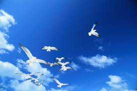 bagai terbang di langitMu